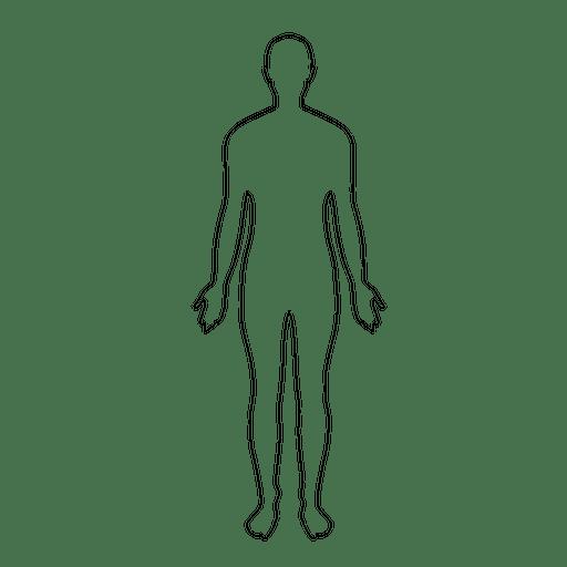 Ilustração do homem do corpo humano
