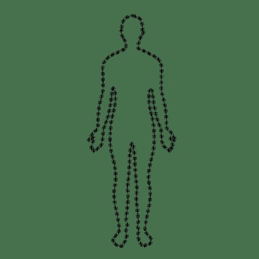 Cuerpo humano hombre líneas discontinuas Transparent PNG