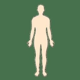 Homem do corpo humano countour pontilhada