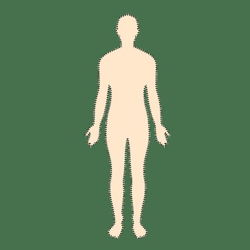 Homem do corpo humano countour pontilhada Transparent PNG