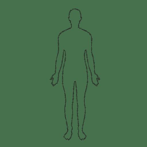Homem corpo humano, pontilhado Transparent PNG