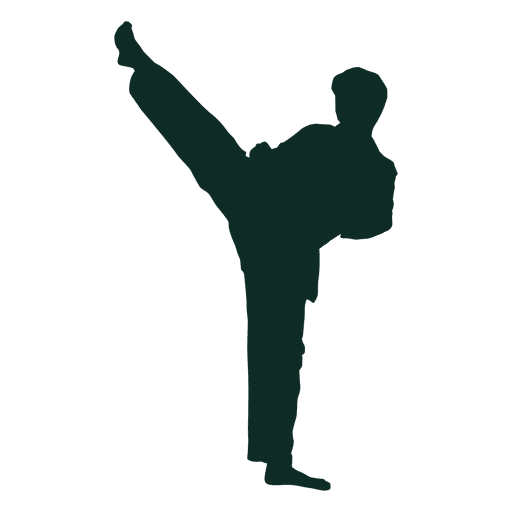 Karate front kick  Stretch Transparent PNG
