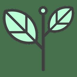 Palant flor de las hojas