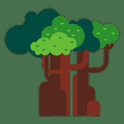 Árvores madeiras natureza