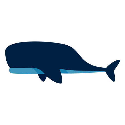 Ballenas gran animal océano