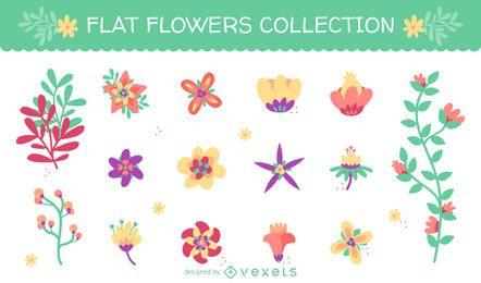 Enorme conjunto con 15 ilustraciones de flores planas.
