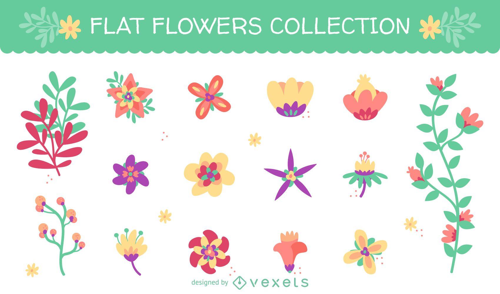 Gran conjunto con 15 ilustraciones de flores planas