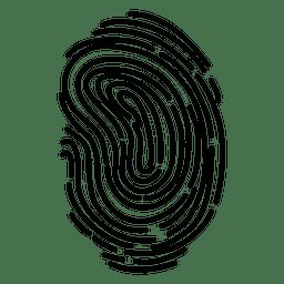 Curvas detalladas de huellas dactilares