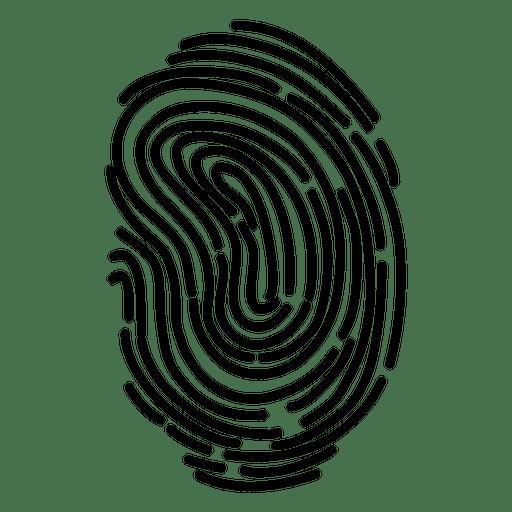Fingerprint detailed curves Transparent PNG