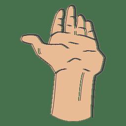 Dedos da mão ilustrados