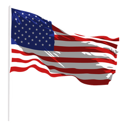 Estados Unidos agitando bandeira