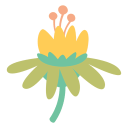 Flower doodle colorful