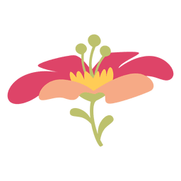 Pink flower illustration
