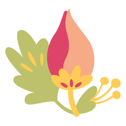 Flor plana ilustración de doodle planta