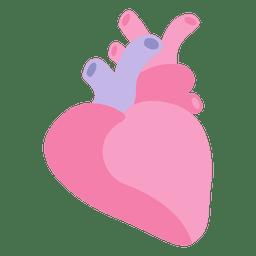 Órgão humano do coração