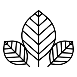 Hojas logo naturaleza