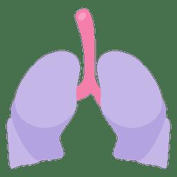 Órgano humano de los pulmones