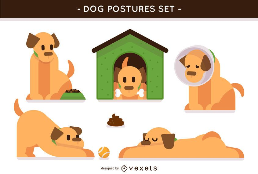 Conjunto de posturas de cães ilustradas