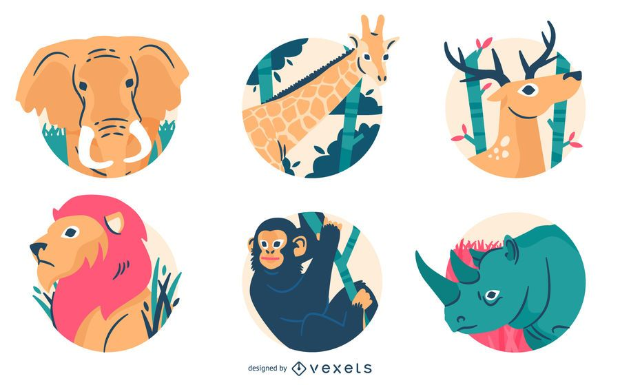 Wild animal badges and illustration
