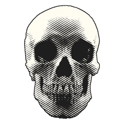 Crânio de ilustração de Halloween