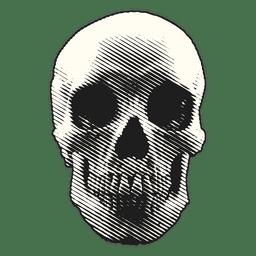 Ilustração do Dia das Bruxas crânio