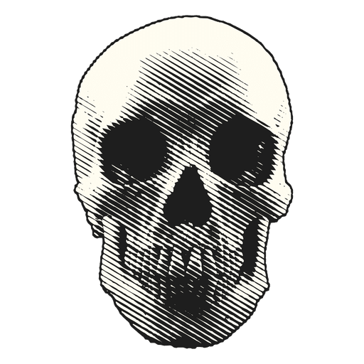 Halloween illustration skull Transparent PNG