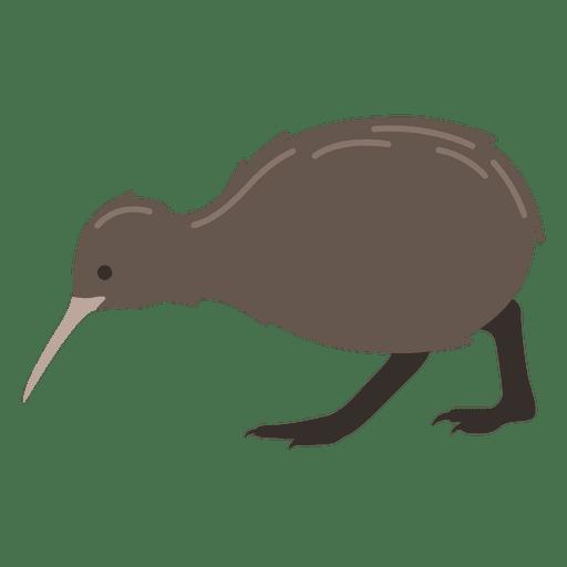 Kiwi-Vogel Apteryx Transparent PNG