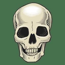Crânio com ilustração assustadora