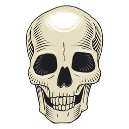 Scary illustration skull