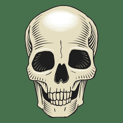 Cráneo de ilustración de miedo