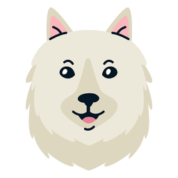 American eskimo illustration