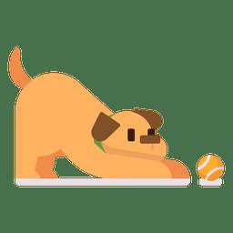 Cão tocando