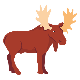 Flat moose illustration
