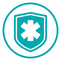 Medical cross shield icon