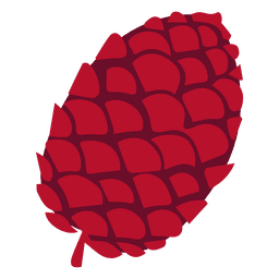 Ilustración de cono de pino