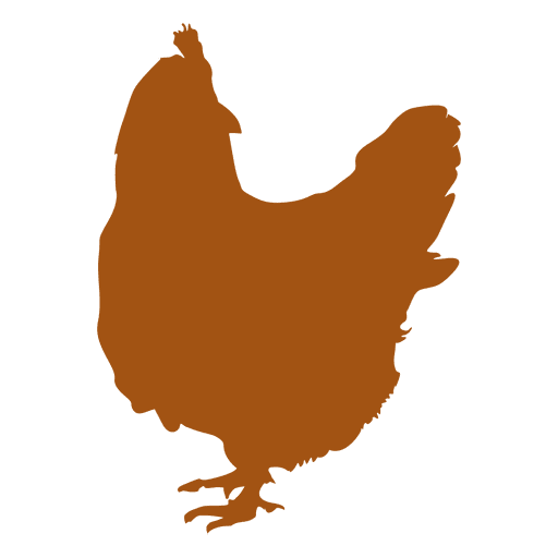 Gallo de silueta de pollo