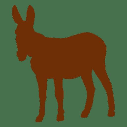 Silhueta animal de burro Transparent PNG