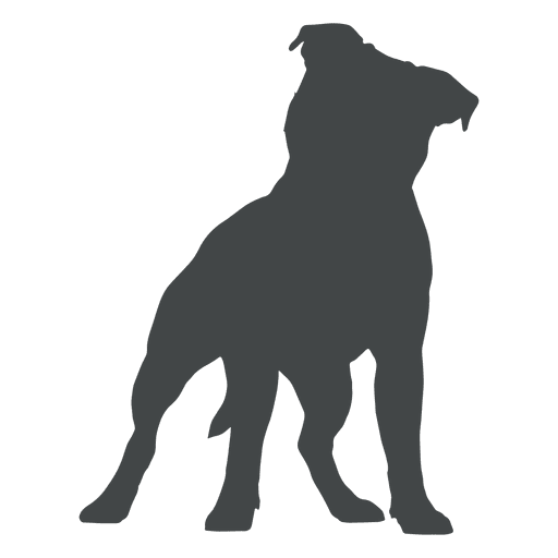 Puppy dog silhouette posing