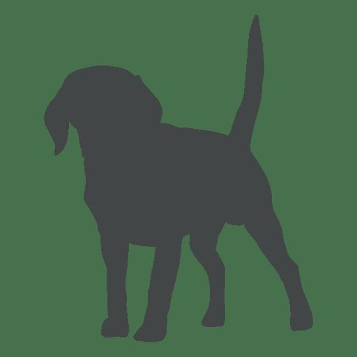 Puppy silhouette posing