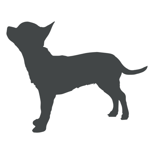 Puppy silhouette posing howling