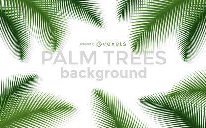 Quadro de fundo de árvores de palma