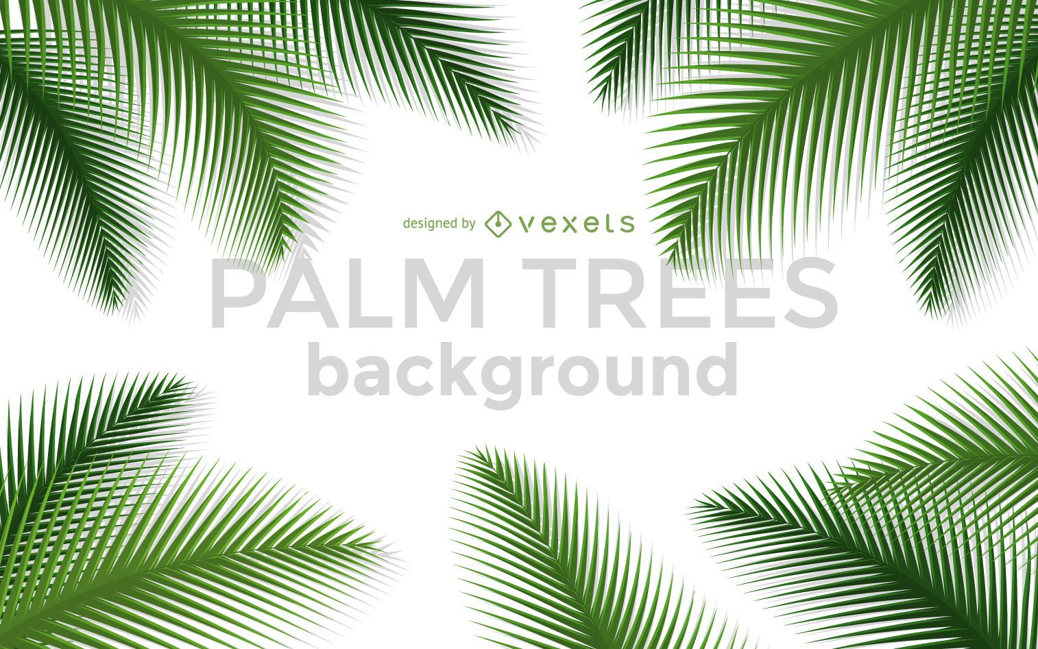 Palm trees background frame