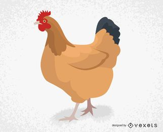 Farm chicken illustration