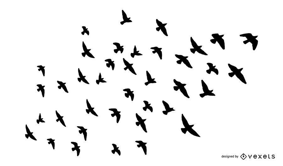 Conjunto de silueta de bandada de pájaros