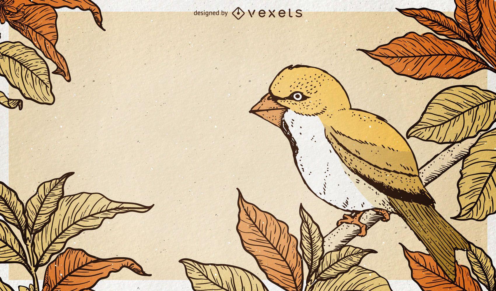 Fondo de ilustración de pájaro