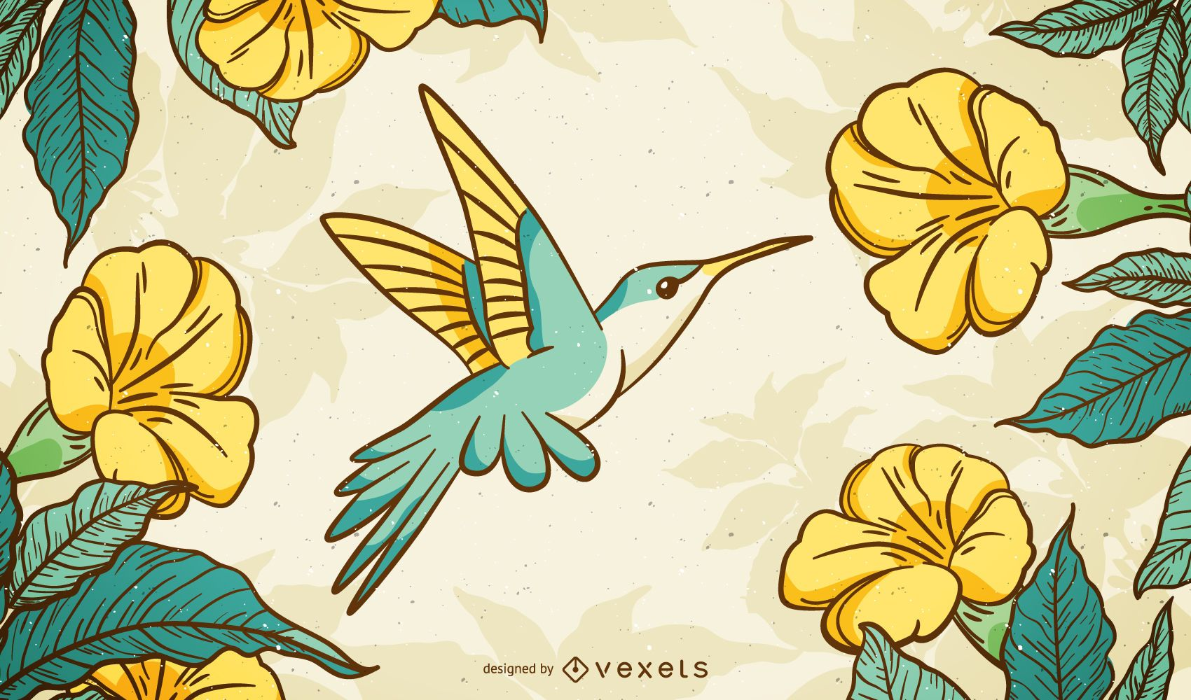 Fundo de colibri ilustrado