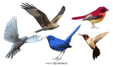 Conjunto de 5 pájaros ilustrados.