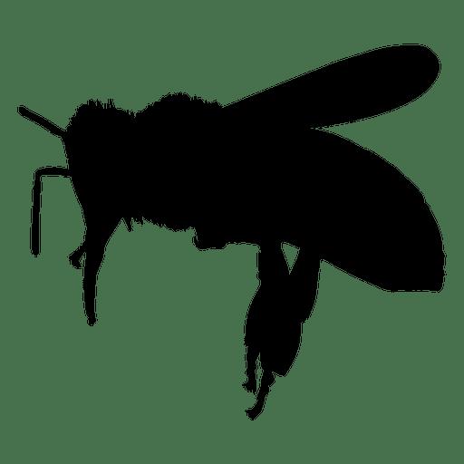 Bee flight silhouette