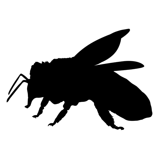 Honey bee silhouette Transparent PNG