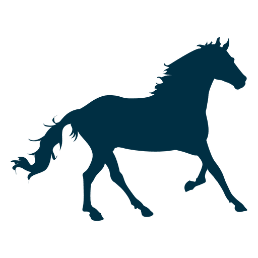 Horse canter silhouette Transparent PNG
